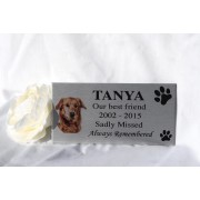 Pet Memorial plaque Chrome Effect